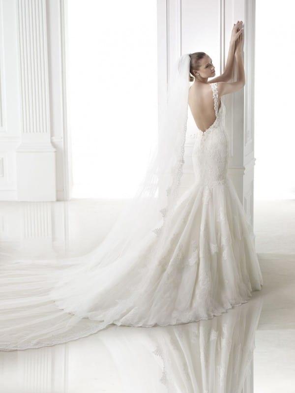 masada vestuvine suknele 2