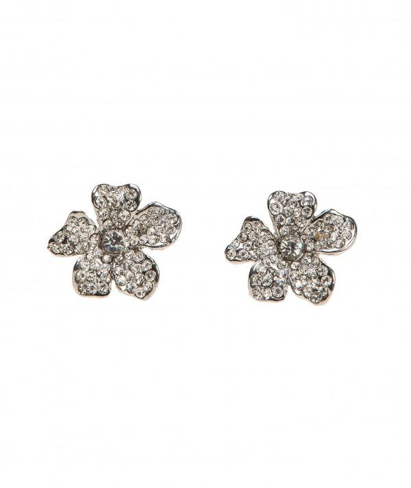 Earrings PT-2566